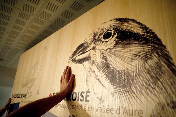 Habillage de la Maison du Parc National des Pyrénées, Saint-Lary-Soulan